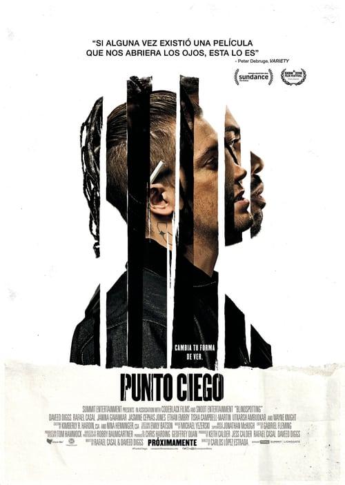Punto ciego 2018 [Latino – Ingles] MEDIAFIRE