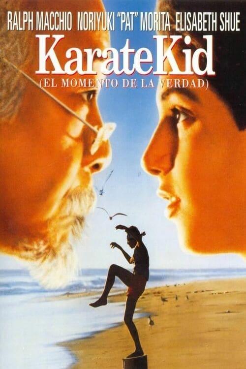 Karate Kid 1984 [Latino – Ingles] MEDIAFIRE