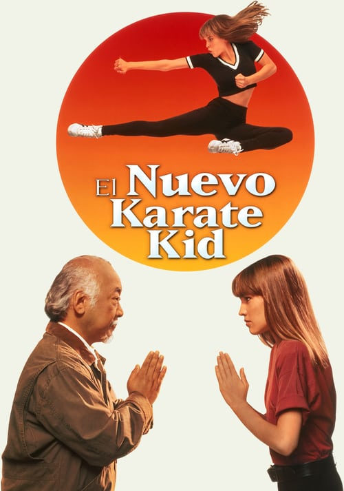 Karate Kid 4: La nueva aventura 1994 [Latino – Ingles] MEDIAFIRE