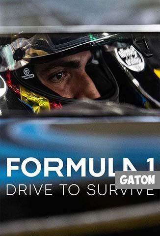 Formula 1: Drive to Survive TEMPORADA 2 [Latino – Ingles] MEDIAFIRE