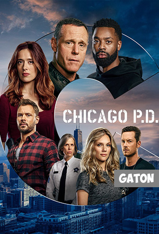 Chicago PD TEMPORADA 8 [Latino – Ingles] MEDIAFIRE