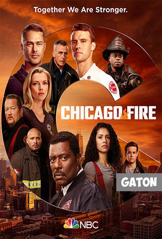 Chicago Fire TEMPORADA 9 [Latino – Ingles] MEDIAFIRE