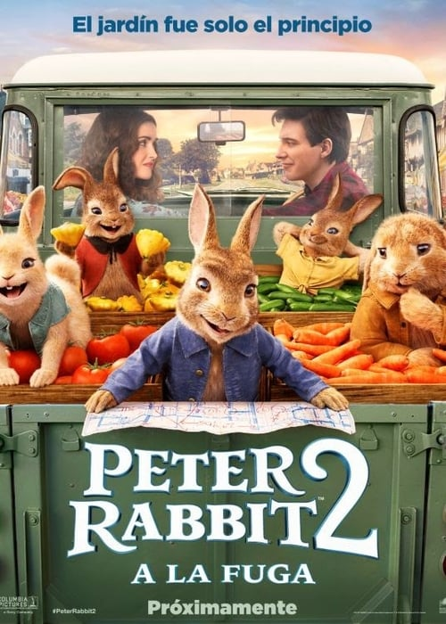 Peter Rabbit 2: Conejo en Fuga 2021 [Latino – Ingles] MEDIAFIRE
